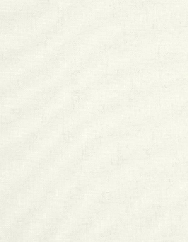 Transparant Vouwgordijn Kleurstaal Anijs