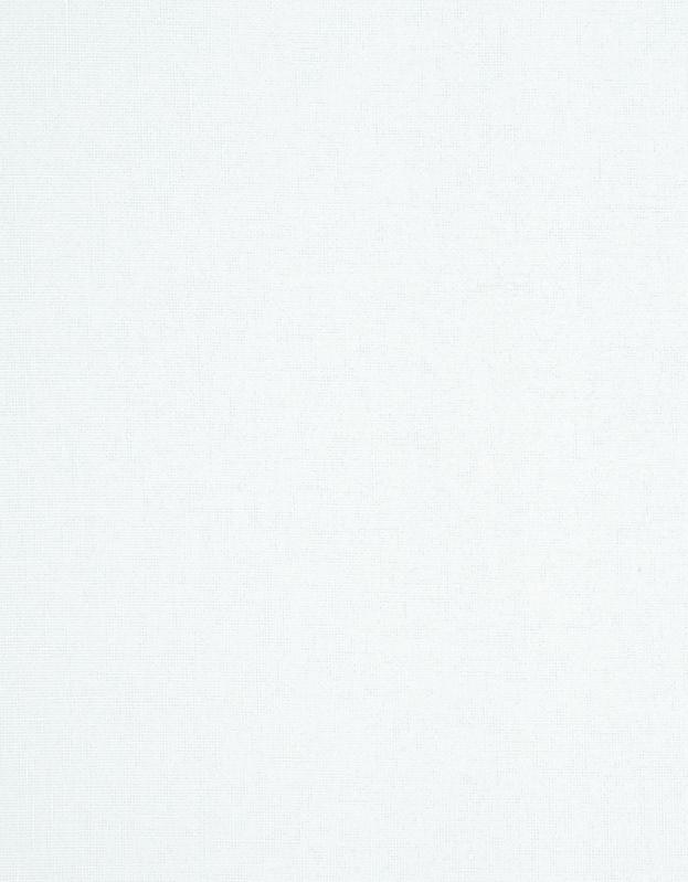Transparant Vouwgordijn Kleurstaal Zuiver Wit