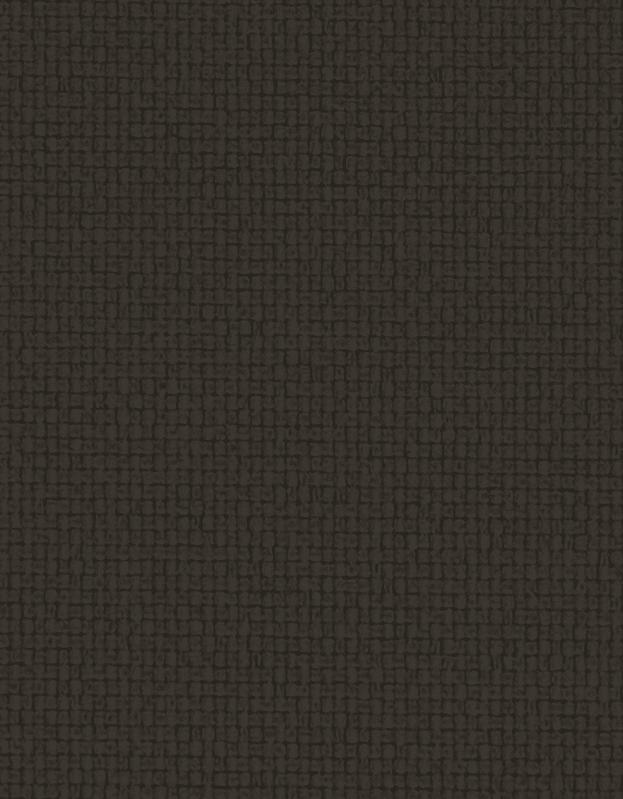 Lichtdoorlatend Vouwgordijn Kleurstaal Lei