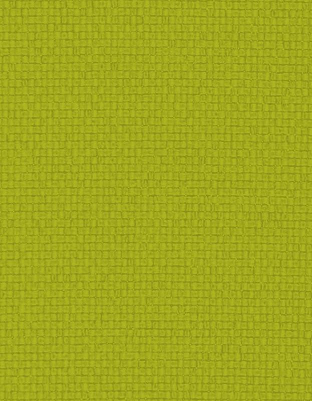 Lichtdoorlatend Vouwgordijn Kleurstaal Limoen