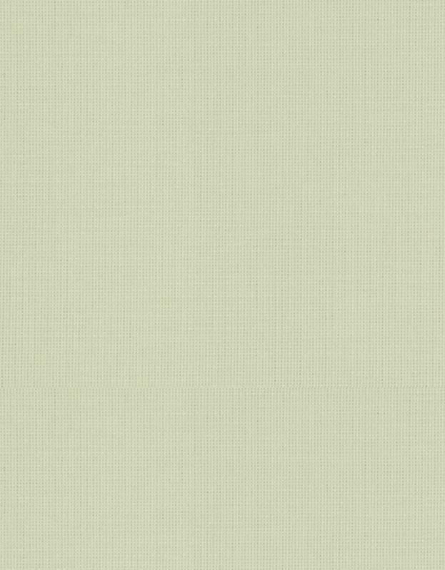 Semi-transparant Vouwgordijn Kleurstaal Berk