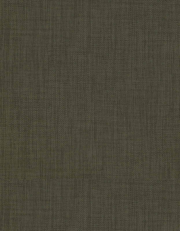 Semi-transparant Vouwgordijn Kleurstaal Mammoet