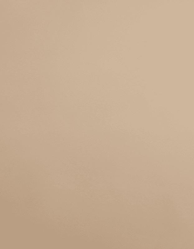 Verduisterend Vouwgordijn Kleurstaal Cappuccino