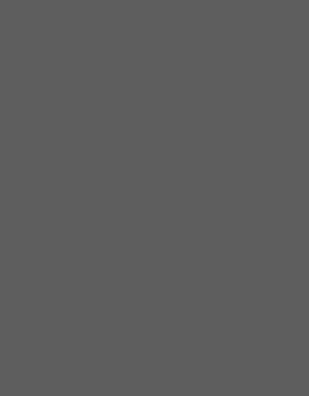 Verduisterend Vouwgordijn Kleurstaal Lood